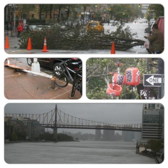 20121030-150016.jpg