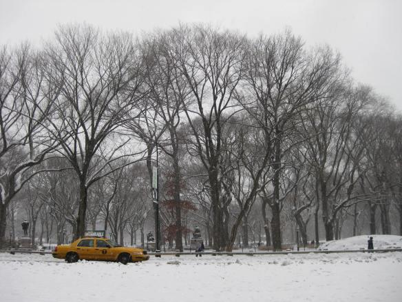 Central Park snow cab