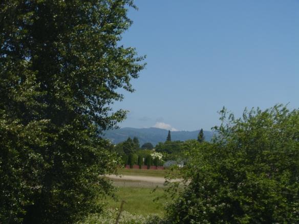 Washington state scenery