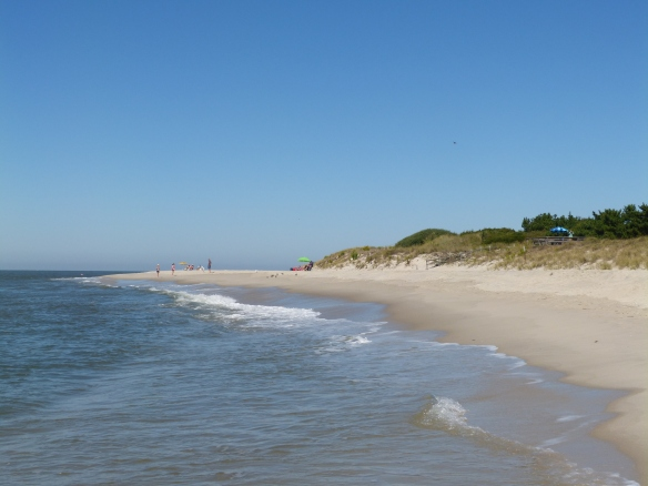 beach at Cape May Point