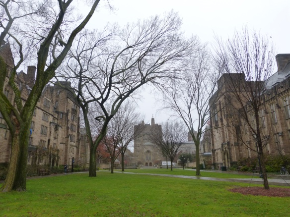 Yale buildings in New Haven