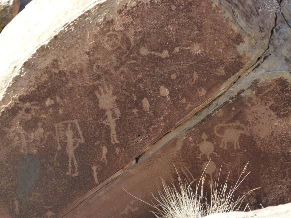 petrified forest petroglyphs