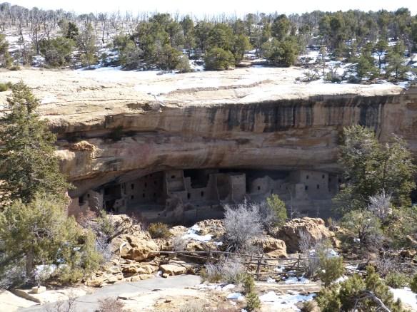 Mesa Verde Spruce Tree House