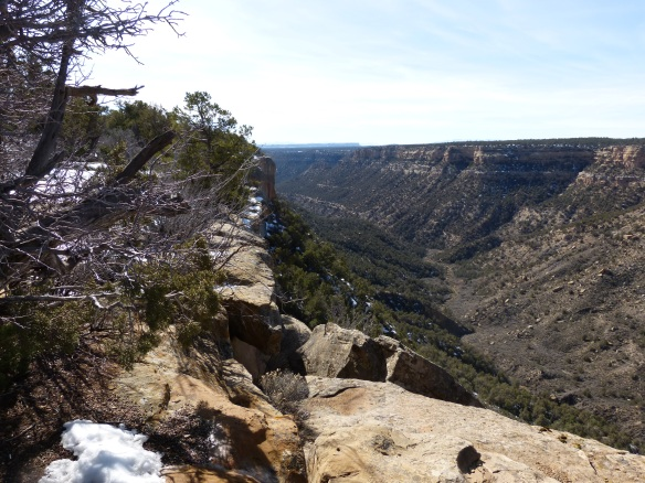 Mesa Verde view