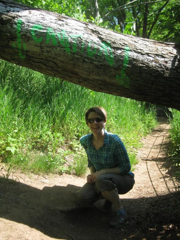 beneath a tree