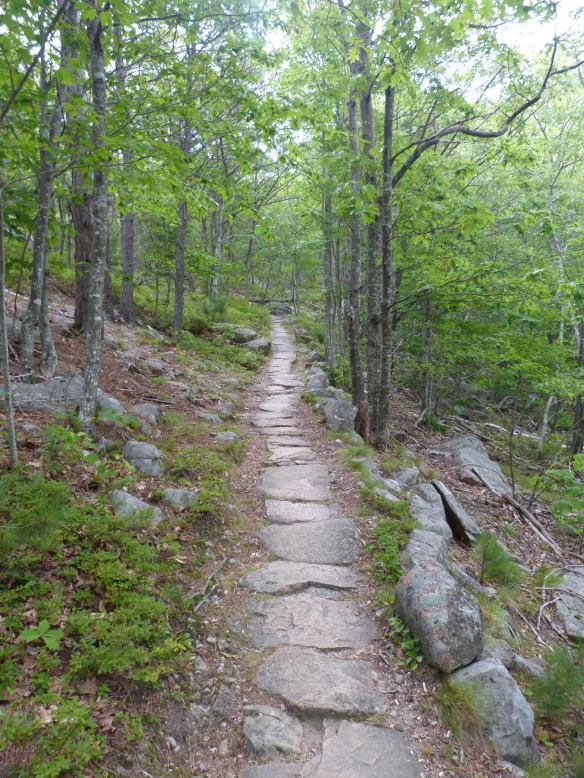 hiking into Acadia