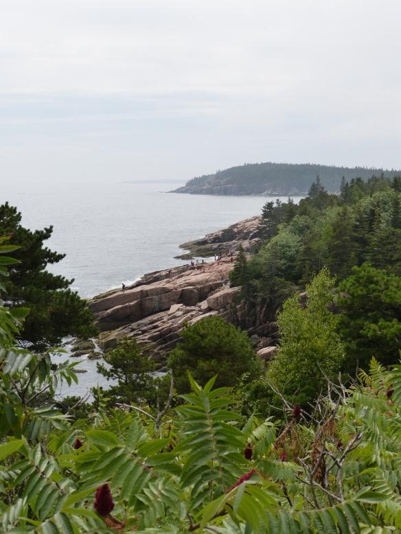 Acadia cliff views