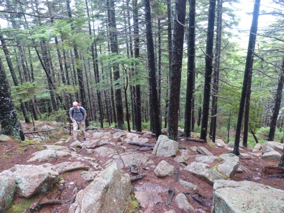 Acadia: Tom in the woods