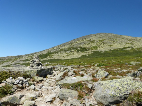 up to the summit of Mt Washington