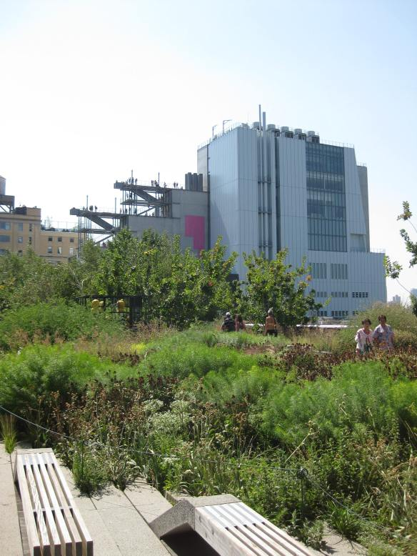the Whitney from the High Line