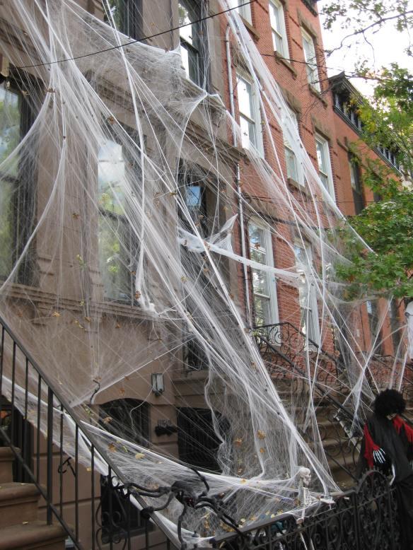Spiderwebs everywhere