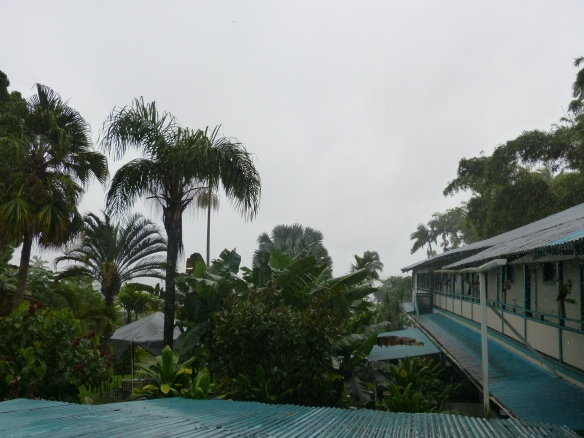 Wild Ginger Inn, Hilo. View from the lanai towards the Pacifi