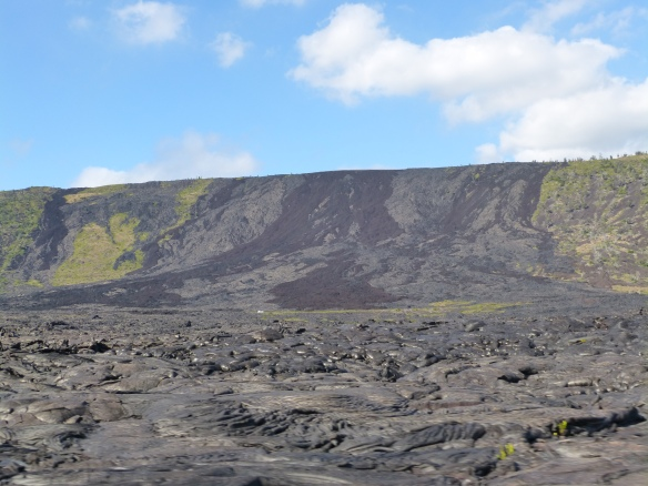 lava and vegetation